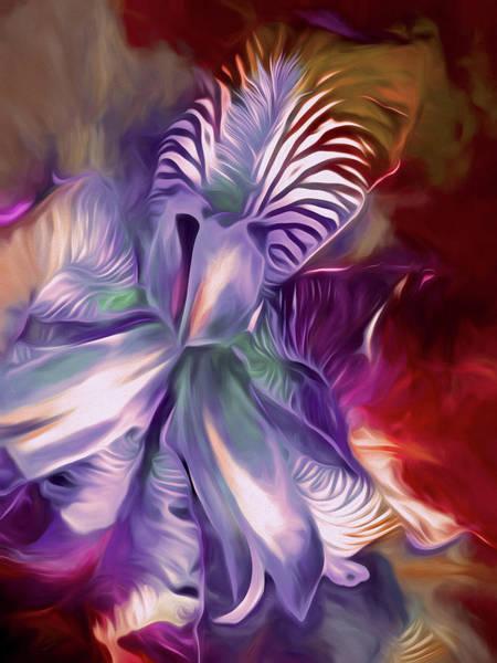 Iris Splendor 12 Poster