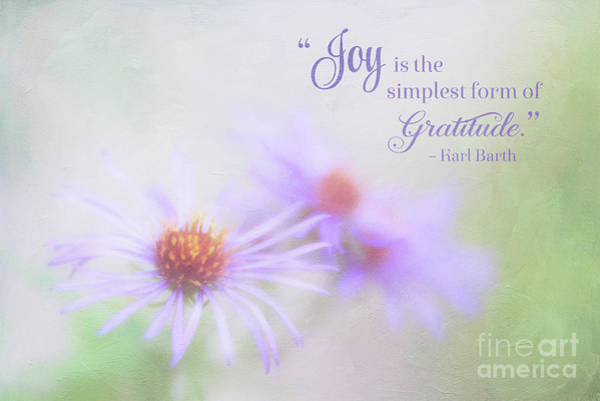 Joy And Gratitude For All Seasons Poster