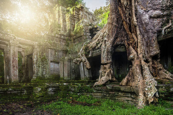 Poster featuring the photograph Jungle Temple 2 by Nicole Young