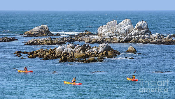 Kayakers Experience Bird Rock At Pacific Grove Poster