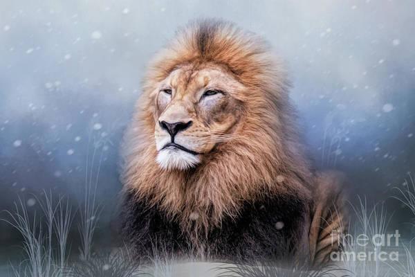 King Winter Poster