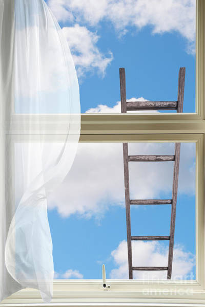 Ladder Against Window Pane Poster
