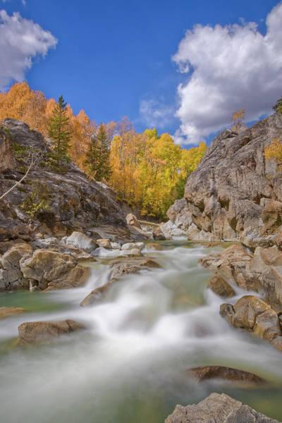 Lake Creek Fall Colors 1 Poster