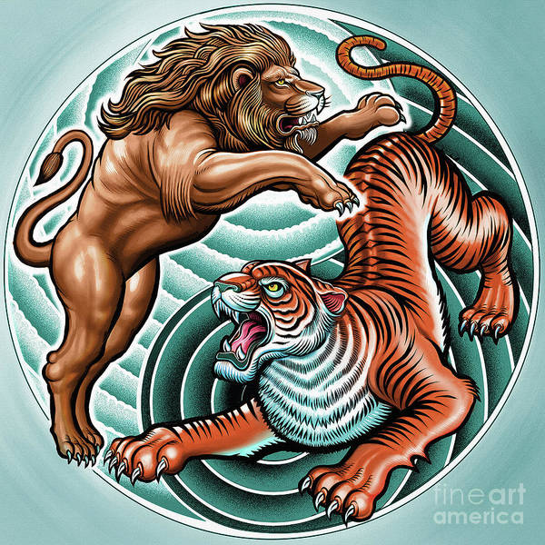 Lion And Tiger  Poster