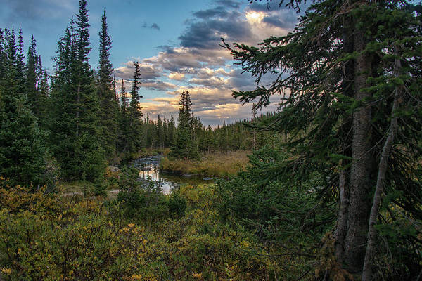 Poster featuring the photograph Long Lake Outlet by Darlene Bushue