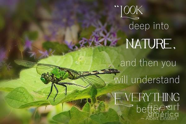 Look Deep Into Nature  Poster