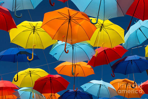 Lots Of Umbrellas Coloring The Sky In Poster