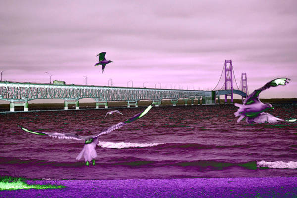 Mackinac Bridge Seagulls Poster