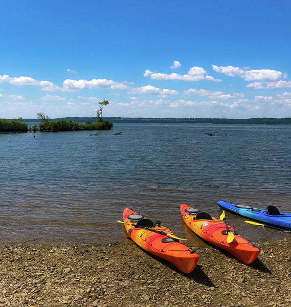 Poster featuring the photograph Mallows Bay And Kayaks by Lora J Wilson