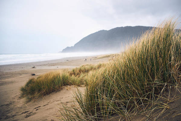 Poster featuring the photograph Manzanita Beach by Whitney Goodey