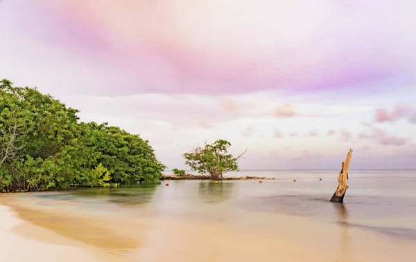 Mayan Sea Poster