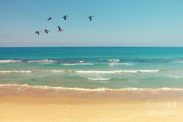 Mediterranean Sea And Sand Beach Poster