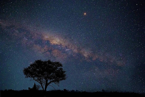 Milky Way Over Africa Poster