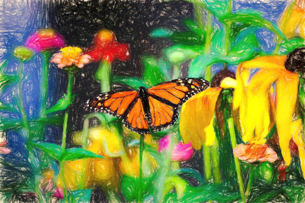 Monarch Butterfly Colored Pencil Poster