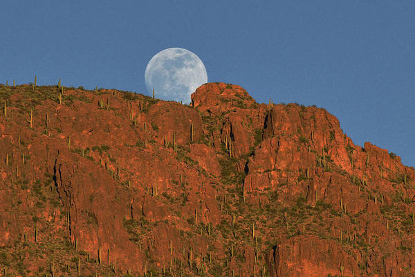 Moonrise Over The Tucson Mountains Poster
