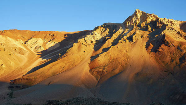 Poster featuring the photograph Mountain Gold by Whitney Goodey
