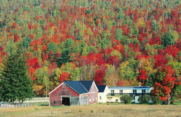 North New Hampshire Landscape Along Poster