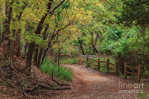Oklahoma City's Martin Nature Park In Fall Color Poster