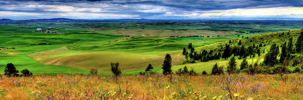 Palouse Hills From The Butte Poster