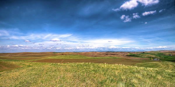 Palouse Hills In Spring Poster