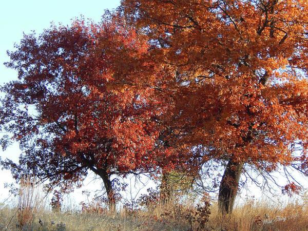 Passing Autumn Poster