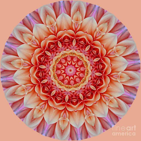 Peach Floral Mandala Poster