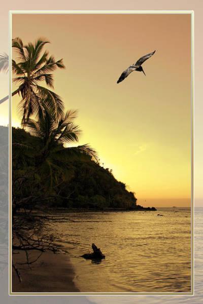 Pelican Sundown Poster
