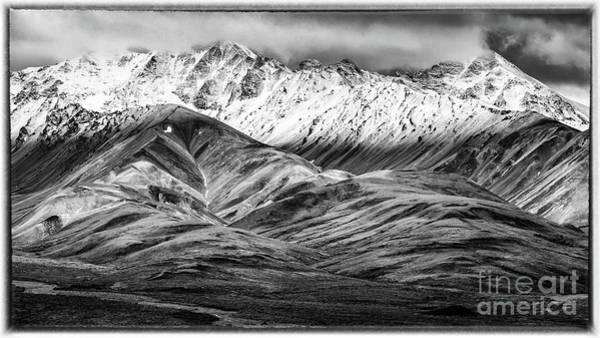 Polychrome Mountain, Denali National Park, Alaska, Bw Poster