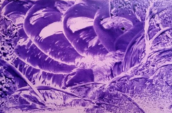 Purple Abstract, Octopus Poster
