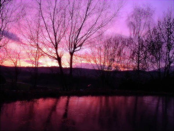 Purple Winter Sunset Over The Lake Poster