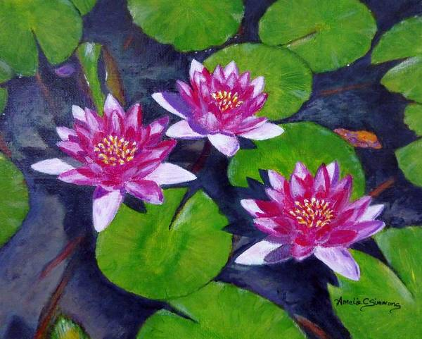 Rancho Water Lilies Poster