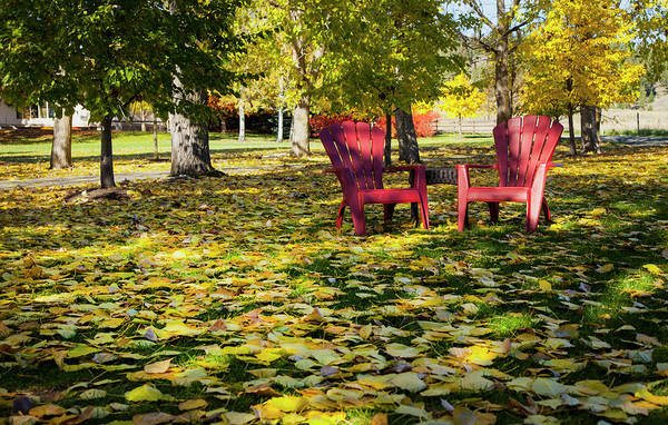 Red Chairs In Autumn Poster
