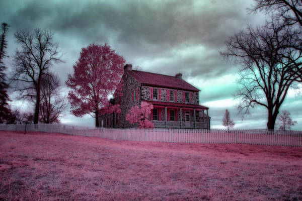 Rose Farm In Infrared Poster