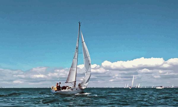 Sailing Regatta On A Brisk Summer's Day Poster