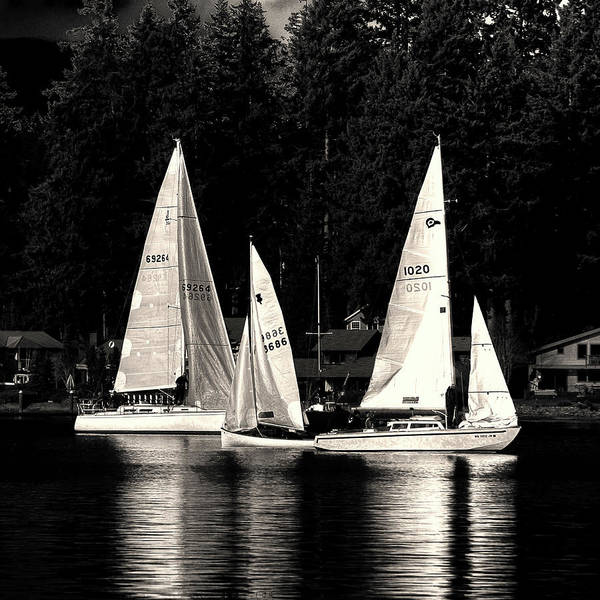 Sails Up Poster