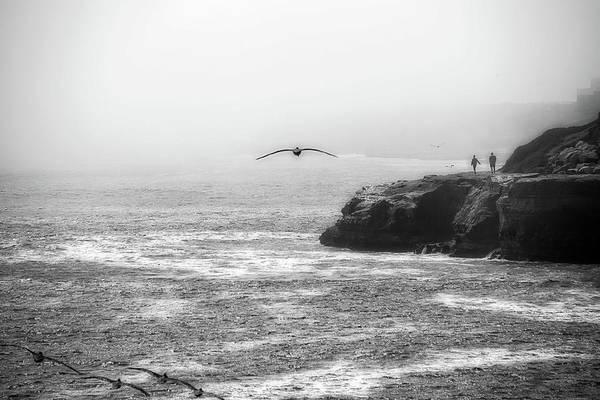 Santa Cruz Coast Poster