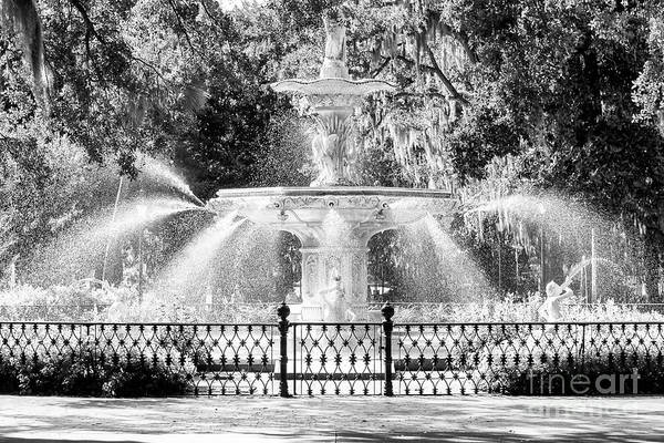 Savannah Forsyth Park Fountain Poster