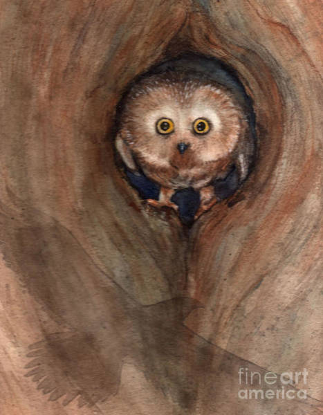 Scardy Owl Poster