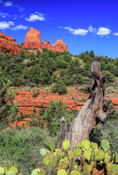 Poster featuring the photograph Schnebly Hill View, Sedona by Dawn Richards