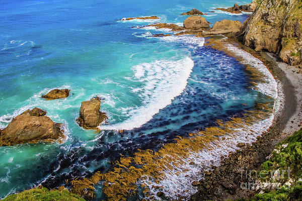 Roaring Bay At Nugget Point Poster