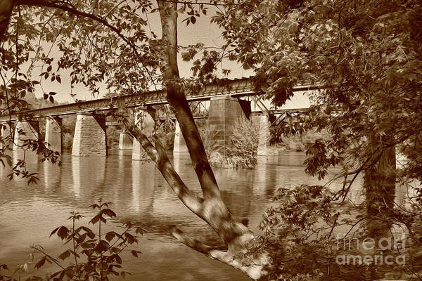 Sepia Painted Trestles Poster