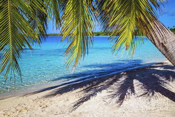 Shadows On The Beach, Takapoto, Tuamotu, French Polynesia Poster
