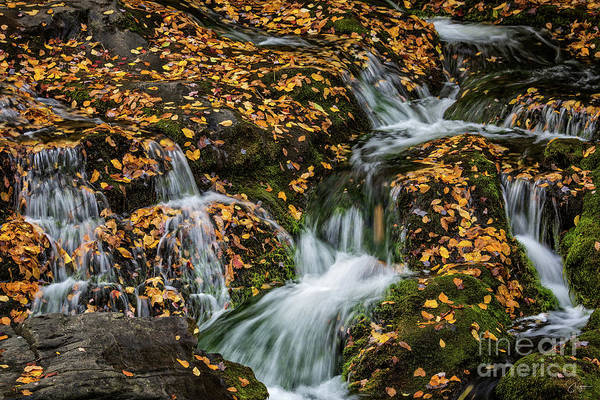Smokey Mountain Falls Poster