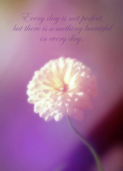 Something Beautiful In Every Day Poster