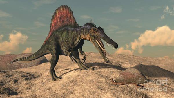 Spinosaurus Dinosaur Hunting A Snake - Poster