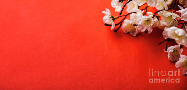 Spring Blossom Border Over Red Background With Copyspace. Chines Poster