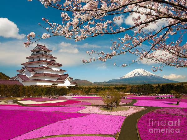 Spring Season In Japan Poster