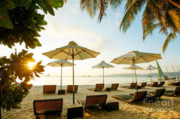 Sun Umbrellas And Beach Chairs On Poster
