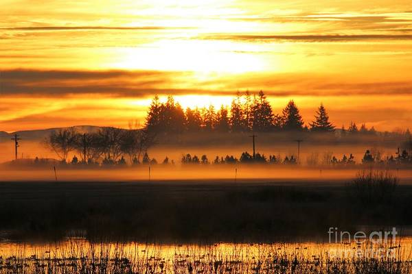 Sunrise Over The Wetlands Poster