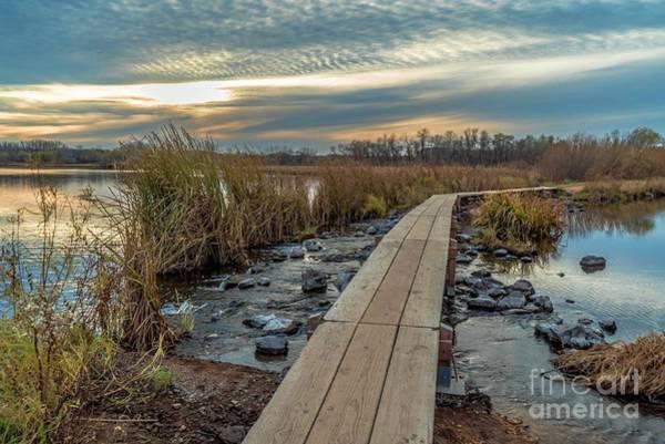 Sunset At Purgatory Creek Poster
